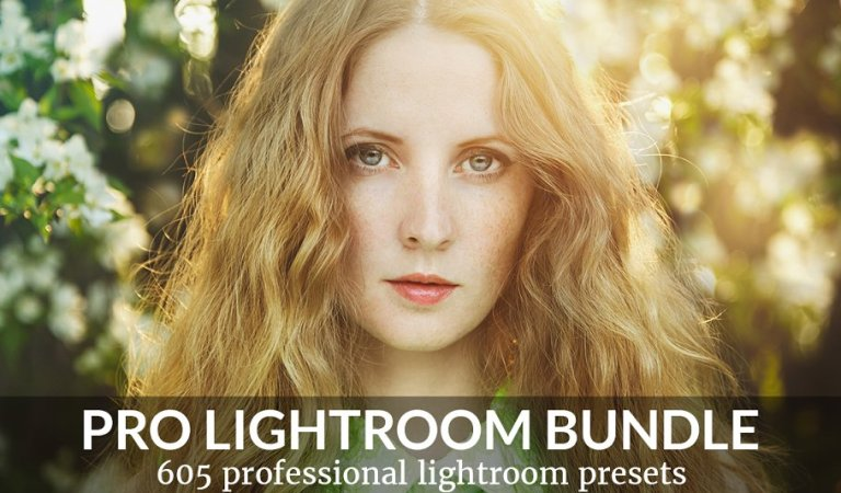 Pro Lightroom Presets Bundle 89% Off