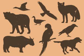 Animals & Birds Silhouette PSD