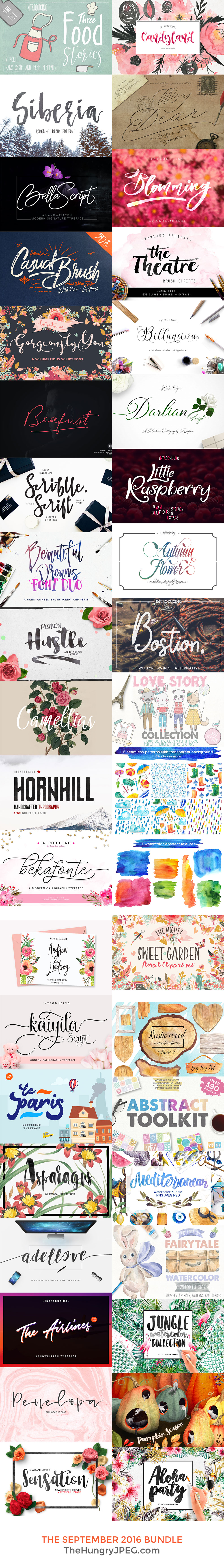 Fonts & Graphics Bundle
