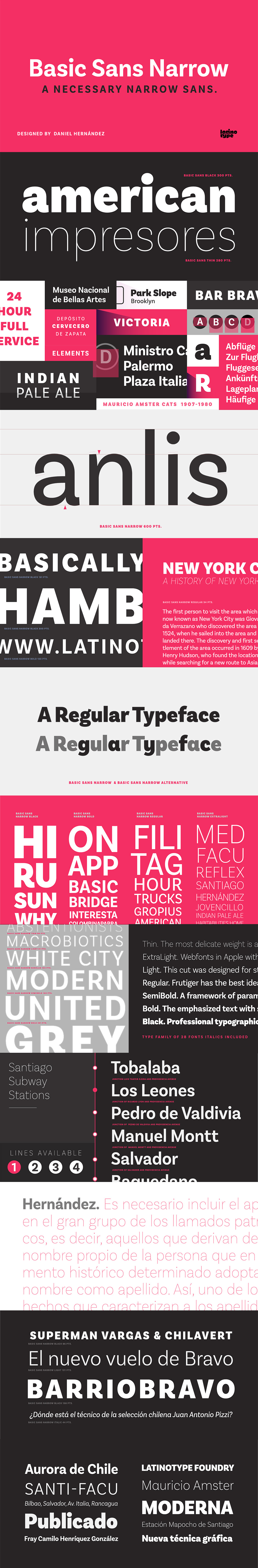 Definitive Fonts Bundle Basic Sans