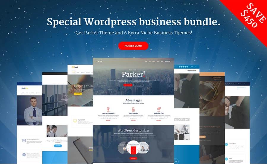 Special WordPress Bundle