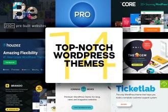 Top Wordpress Theme