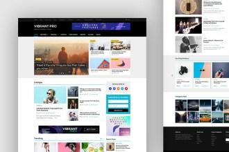 Vibrant Pro: Magazine WordPress Theme