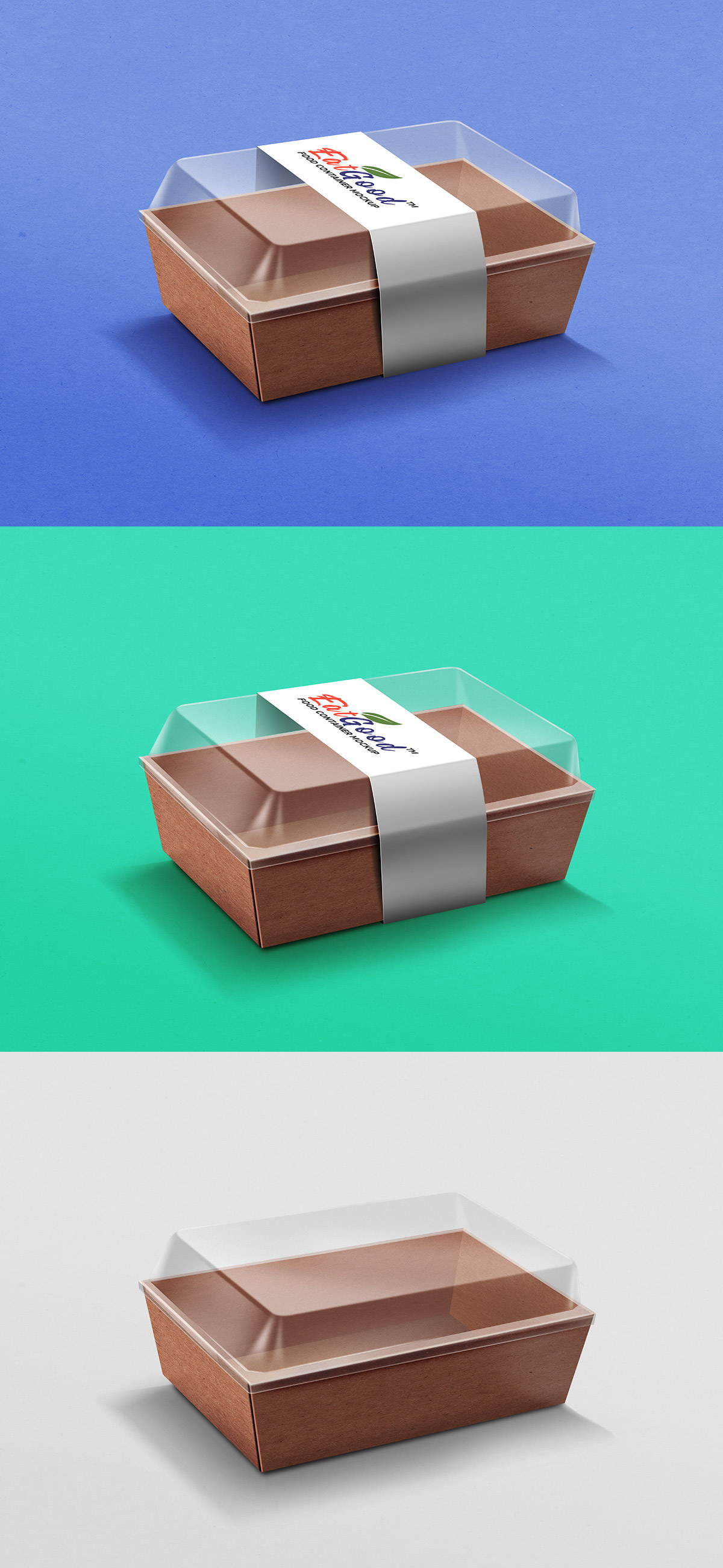 Food Container Paper Packaging Mockup