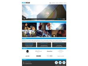 BlueHead Studio