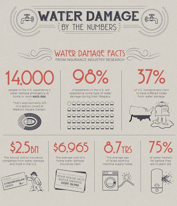 Everything You Need to Know about Water Damage and Water Damage Restoration (Picture 2)