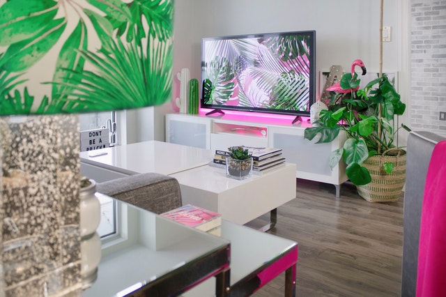 white coffe table and plant decor also wooden flooring in room