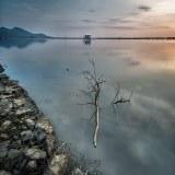 Lang Co driftwood