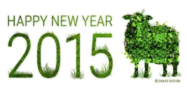 2015 新年明けましておめでとうございます!