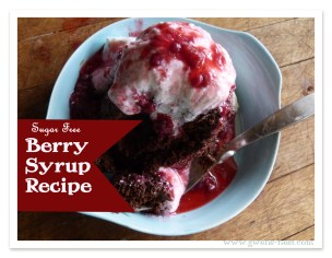 Sugar-Free-Berry-Syrup-Recipe