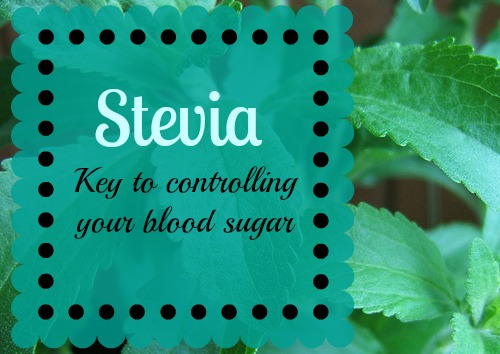stevia, natural sweetener