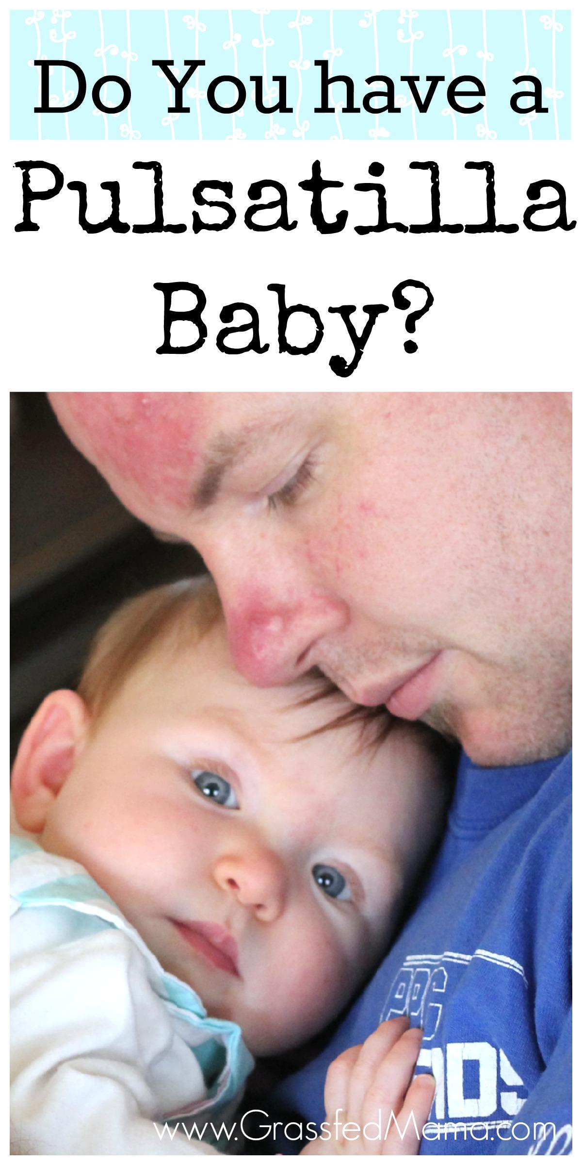 Do you have a Pulsatilla Baby?