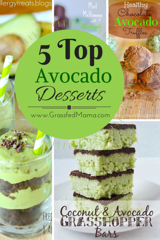 Top 5 Avocado Desserts
