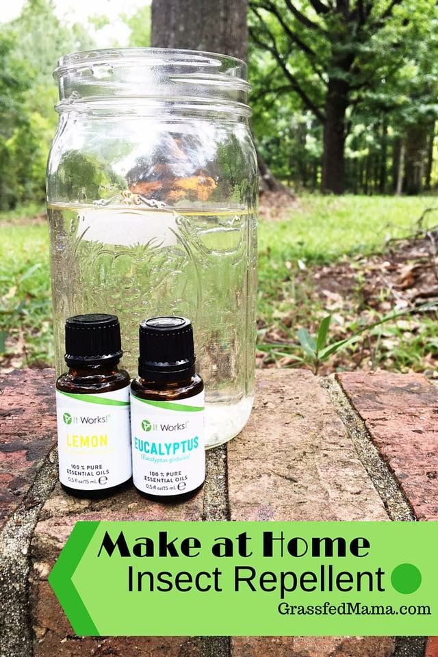 Make At Home Insect Repellent Grassfed Mama