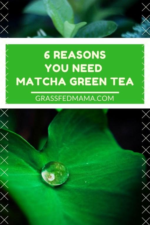 6 Reasons you need Matcha Green Tea