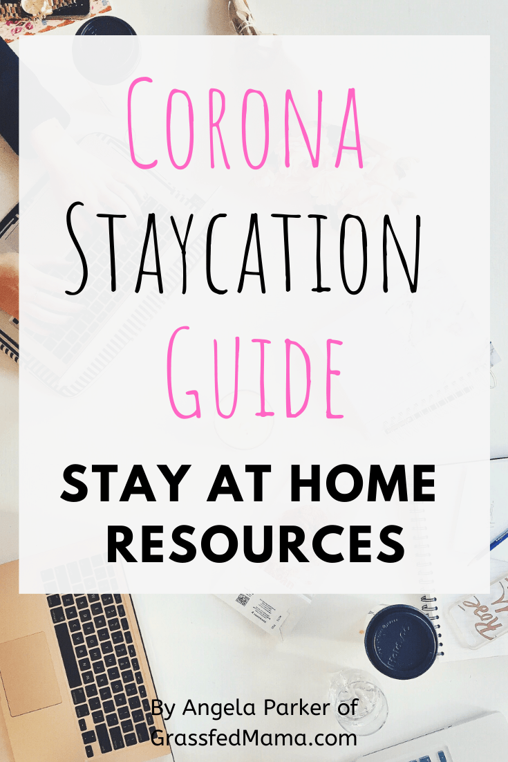 Stay Home Guide