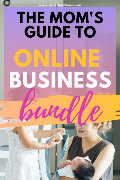 The Mom's Guide to Online Business Growth Bundle