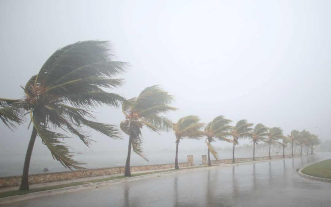 U.S. waives Jones Act before Hurricane Irma hits