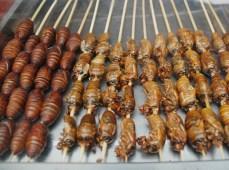 Insecten op de markt, China