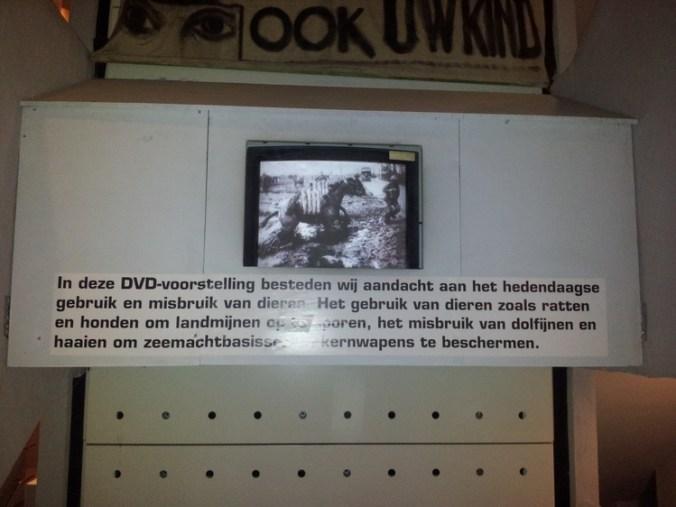 tentoonstelling over gebruik van dieren in de oorlog, Ijzertoren Diksmuide, 2013
