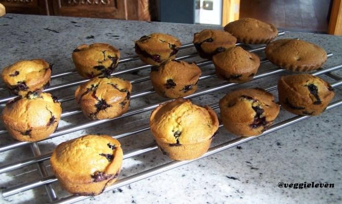 Citroen muffins met blauwe bosbessen