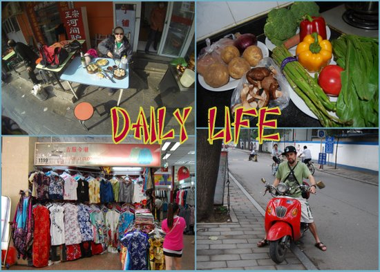 Daily Life1