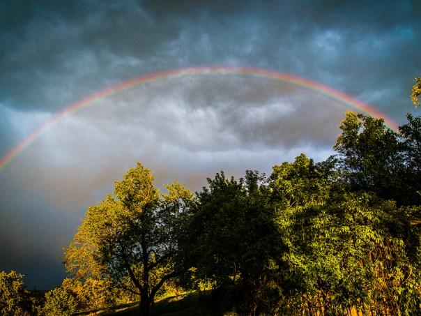 SC8_1922-Regenbogen