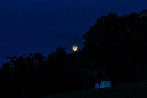 SC8_2479-Mond1