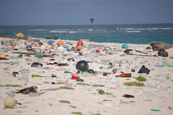 Marine debris that was washed ashore covers a beach on Laysan Island in the Hawaiian Islands National Wildlife Refuge. (Susan White/USFWS)