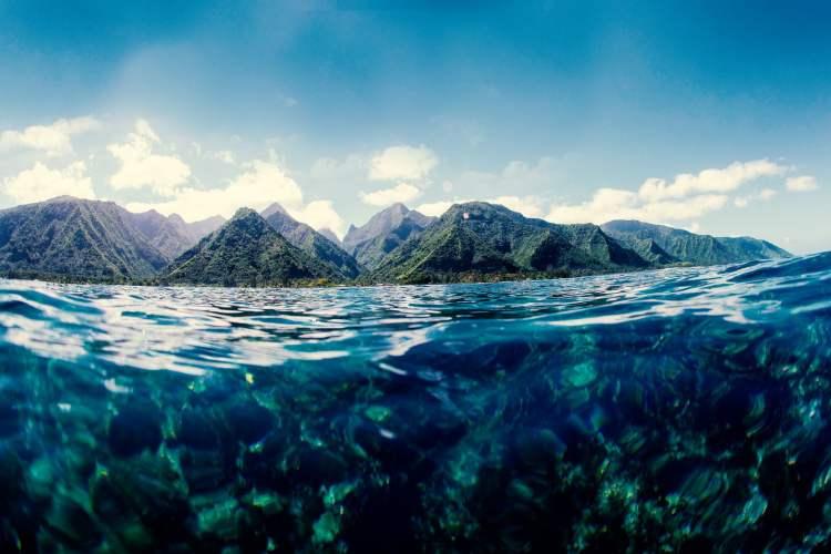 dia mundial de los oceanos mar medio ambiente