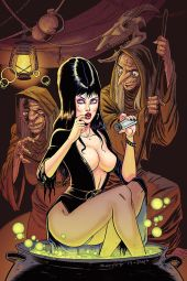 Dynamite Entertainment Elvira: Mistress of the Dark Cover A (Virgin) by Tim Seeley