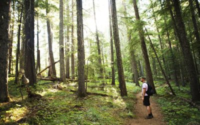 Hiking Meaning and Importance For Your Health