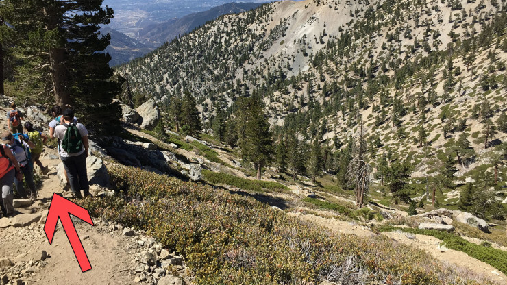 Easy Hiking Trails Near Me: How To Avoid Trouble