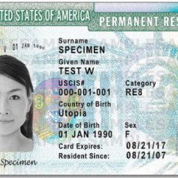 What Happens At A U S  Citizenship Interview? - Gray Law, PLLC