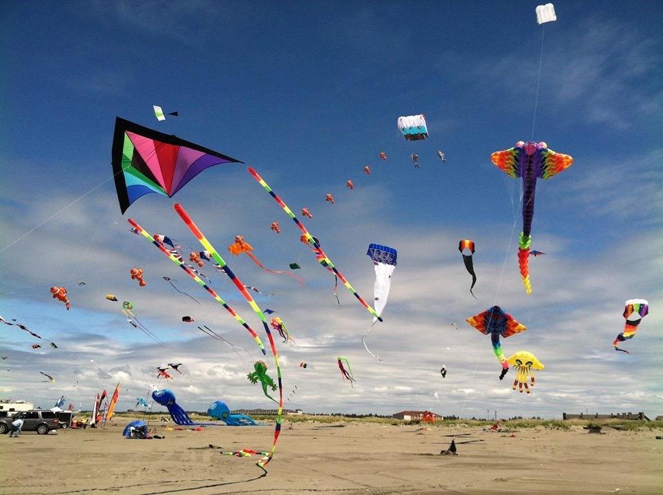 Image result for flying kites