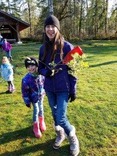 yule log celebration lilly schweppe