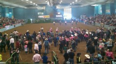 Grays Harbor Mounted Posse Indoor Rodeo Kids Day 10