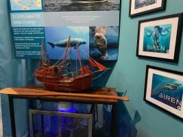 International Mermaid Museum aberdeen 12