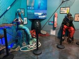 International Mermaid Museum aberdeen 14