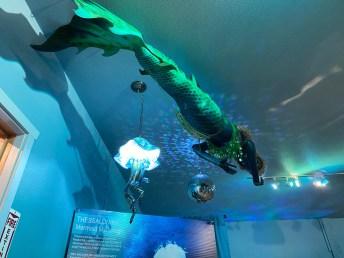 International Mermaid Museum aberdeen 22