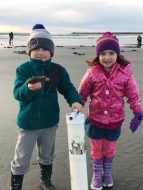 Washington coast clam digging (1)