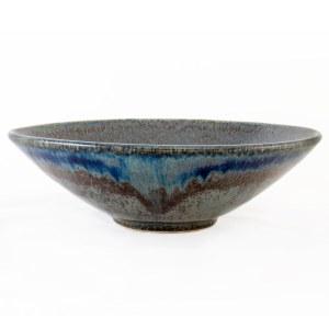 Nirvana Pasta Bowl