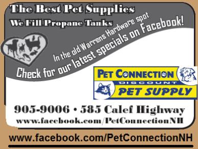 Pet Connection