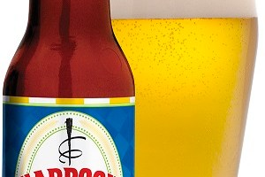 Harpoon Take 5 Session IPA Now Available Nationwide