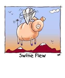 Swine Flew-new
