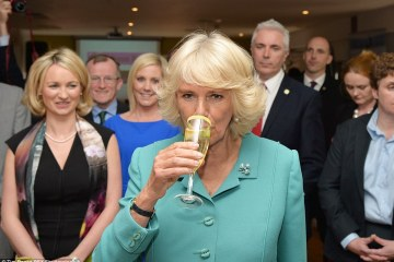Alcohol Anecdotes from the Royals