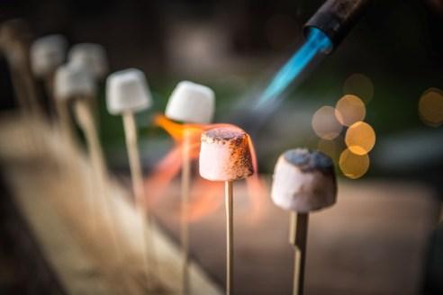 toasted-marshmallows_4