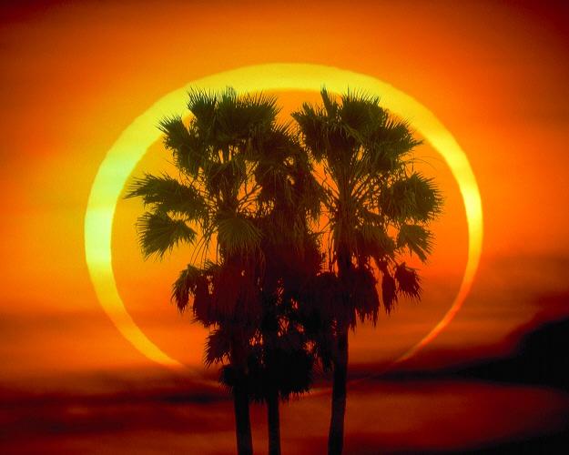 https://i1.wp.com/www.greatdreams.com/solar/2009/RingOfFire_mammana-1982.jpg