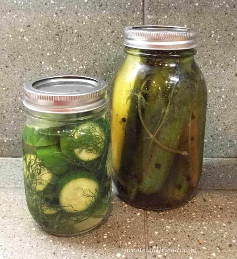 Dill-Pickles-InJars