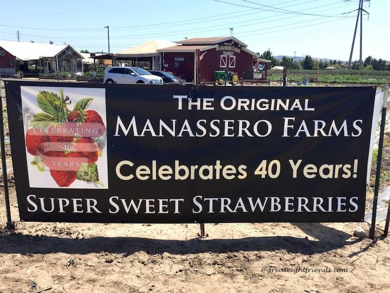 Manassero Farm sign